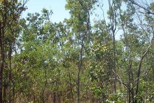 727 Reedbeds Road, Darwin River, NT 0841
