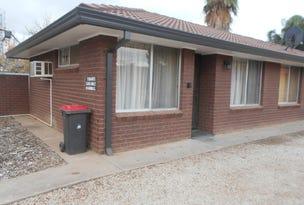 Unit 1/22 Gray Street, Swan Hill, Vic 3585