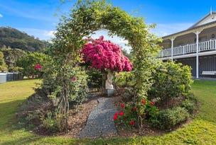 1038 Numinbah Road, Crystal Creek, NSW 2484