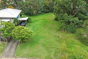 56 David Avenue, Tenambit, NSW 2323