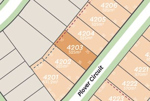 Lot 4203 Plover Circuit, Aberglasslyn, NSW 2320