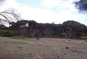 47 Scarlet Runner Road, The Pines, SA 5577