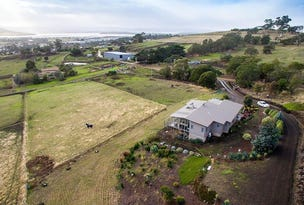 45 Alliance Drive, Cambridge, Tas 7170