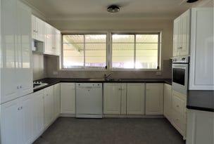 20 Van Diemen Avenue, Willmot, NSW 2770