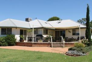 1696 Gulargambone Road, Baradine, NSW 2396