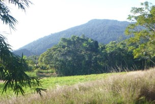 KRUCKOW RD, East Russell, Qld 4861
