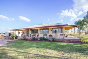 Farm 323 Koonadan Road, Leeton, NSW 2705