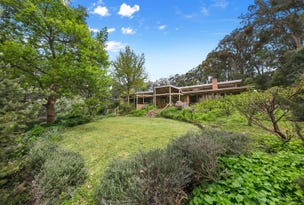 81 William Road, Red Hill, Vic 3937