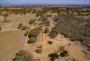 LOT 313 PALING YARDS LOOP ROAD CUDAL, Orange, NSW 2800