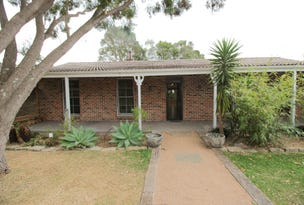 41 Allowie Street, Jamberoo, NSW 2533