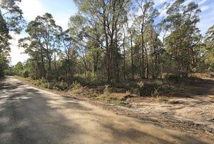 PID 7428085 Elephant Pass Road, St Marys, Tas 7215