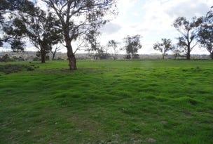 Cudal Gardens Estate, Cudal, NSW 2864