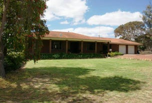 20 Marmion Street West, Katanning, WA 6317