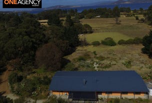 60  Bezzants Road, South Arm, Tas 7022