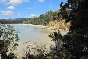 20 Shelly Beach Road, Koonya, Tas 7187
