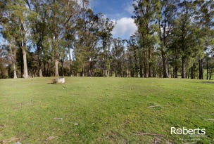 225 Valley Road, Sidmouth, Tas 7270