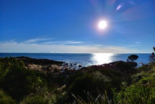 316 Port Road, Boat Harbour, Tas 7321