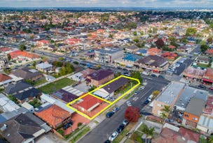 201 Canley Vale Road, Canley Heights, NSW 2166