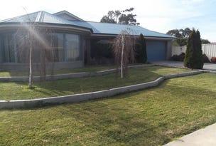 12 Nalder Drive, Swan Hill, Vic 3585