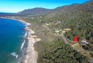 74 Blowhole Road, Eaglehawk Neck, Tas 7179