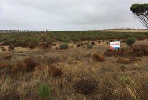 Section 48 Mount Maria Drive, Streaky Bay, SA 5680