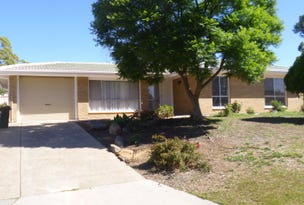 1 Clarence Drive, Athelstone, SA 5076