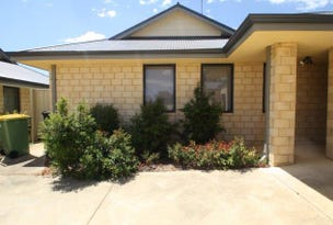 Unit 4/9 Kings Place, Waroona, WA 6215