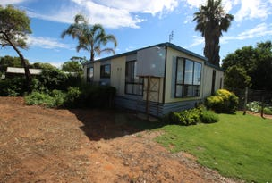 207 Thompson Road, Waikerie, SA 5330