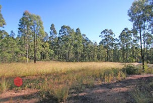 Lot 1, The Inlet Road (DP1167878), Bulga, NSW 2330