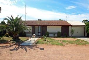 13 Mildura Street, Renmark, SA 5341
