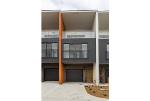 41/2 Rouseabout Street, Lawson, ACT 2617