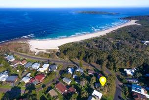 99 Malibu Drive, Bawley Point, NSW 2539