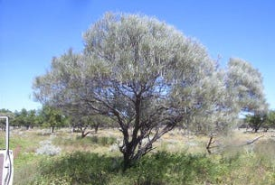 'Nerren Nerren' and 'Meadow' Stations, Meadow, WA 6532