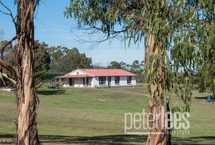 95A Hargrave Crescent, Mayfield, Tas 7248