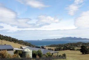1753 Palana Road, Flinders Island, Tas 7255