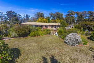 1643 Bridport Road, Bridport, Tas 7262
