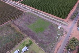 Lot 3 Henry Lawson Drive, Leeton, NSW 2705