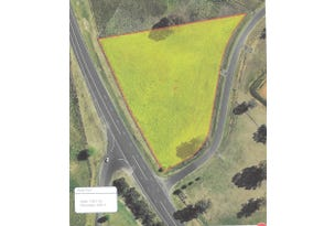 Lot 1 Pindari Grove, Montefiores, NSW 2820
