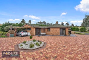 1069 Staverton Road, Staverton, Tas 7306