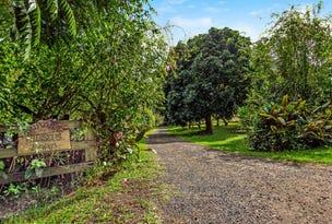 509 Rosebank Road, Rosebank, NSW 2480