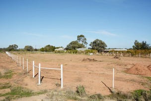 Lot 6 Silver City Highway, Curlwaa, NSW 2648