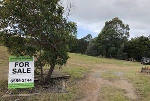 23 Illusions Court, Tallwoods Village, NSW 2430