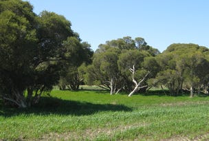 Lot 152 pickles Road, Narrikup, WA 6326