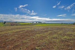 239 Tollymore Road, Table Cape, Tas 7325