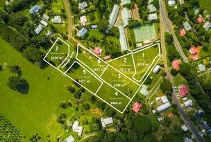 Lots 1 & 2 25 Walker Street, Clunes, NSW 2480