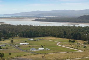 Lot 31, 33 Moorings Drive, Squeaking Point, Tas 7307