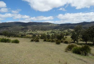 Lot 15 Menzies Road, Lachlan, Tas 7140