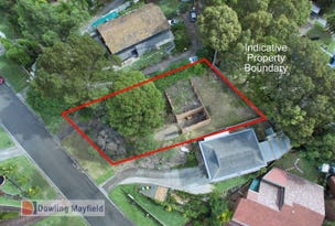 16 Taranaki Place, Macquarie Hills, NSW 2285
