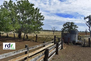 001 Allan Cunningham Road, Bingara, NSW 2404