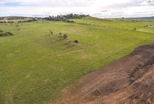 Stage 3 - Lot 313 Waterlilly Fairway, Goulburn, NSW 2580